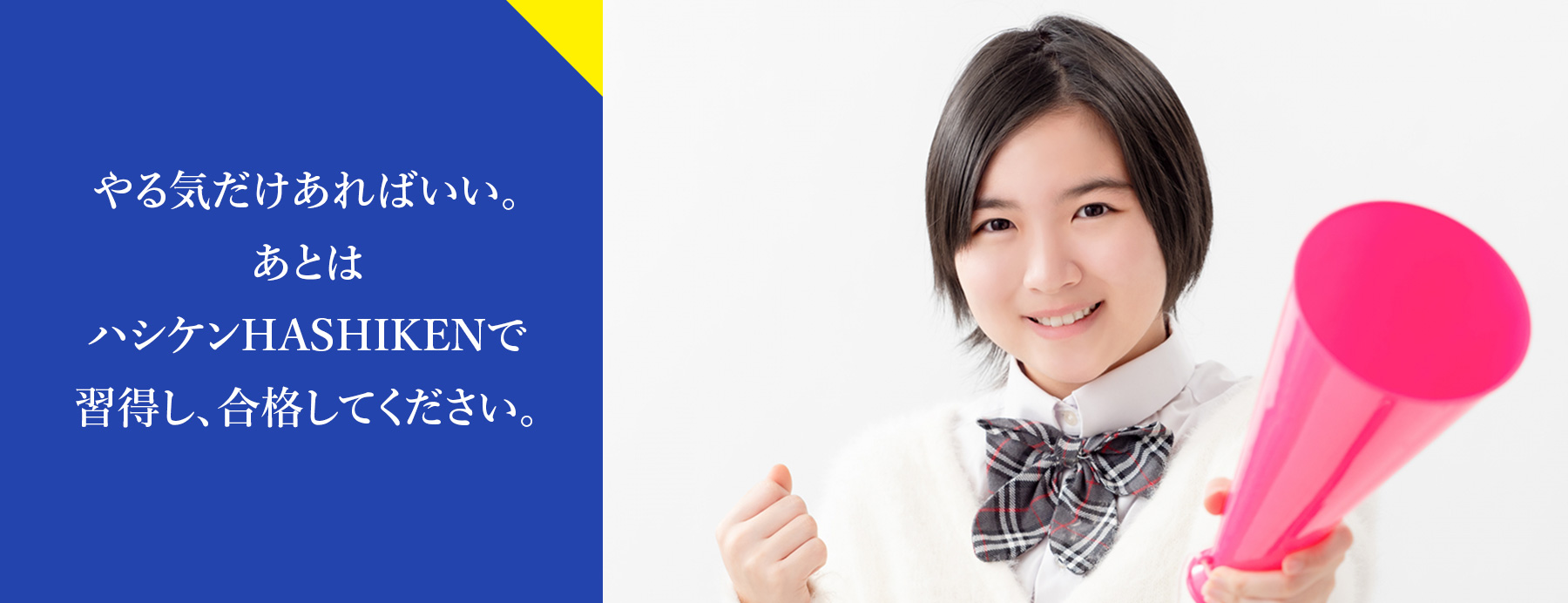 生徒募集 東大、早稲田、医学部など難関大合格は橋本の進学塾・予備校ハシケンHASHIKEN